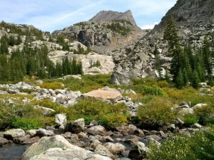 Upper Tourist Creek Drainage